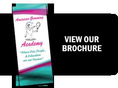 view-brochure2