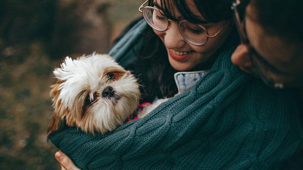 december puppy