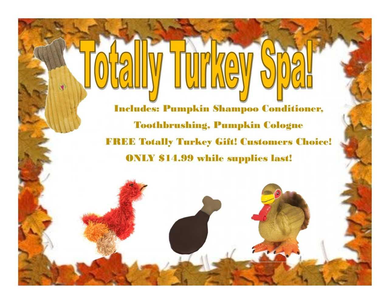 November Pet Grooming Spa Special Temecula